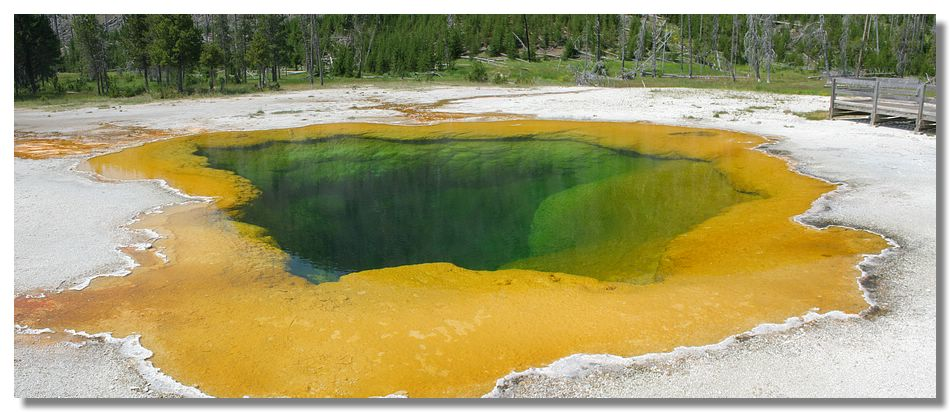 Parc de Yellowstone (Wyoming – USA)