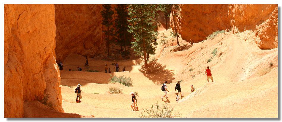 Bryce Canyon (Utah - USA)
