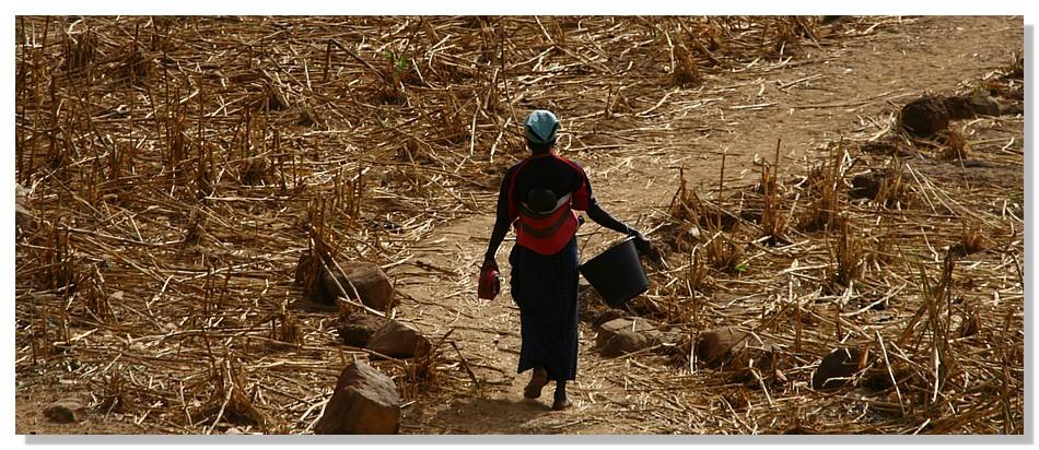 Yendouma Atô (Mali)